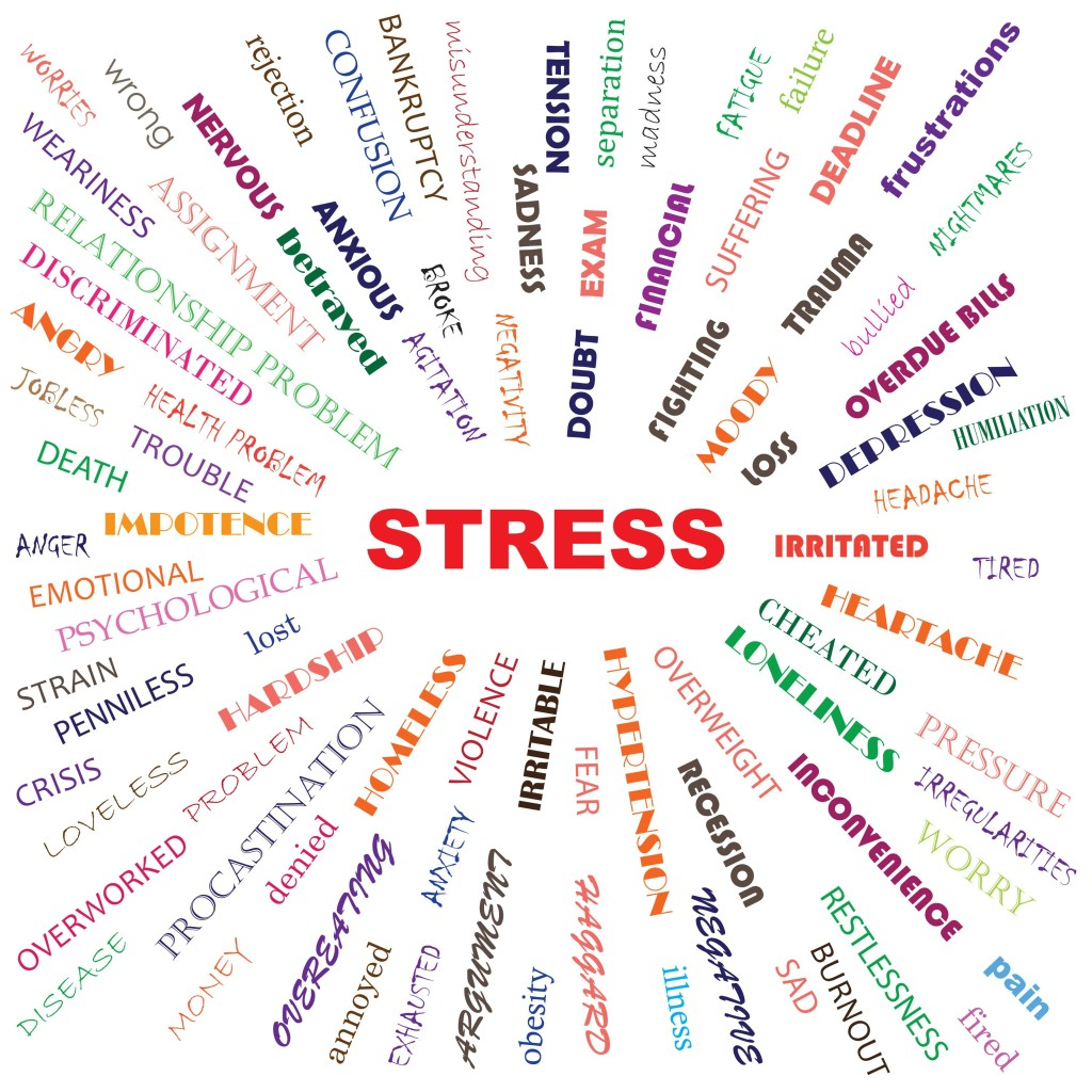 Stress Management and Burnout Awareness Training